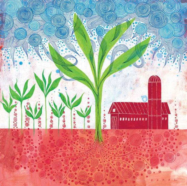 carbon-farming-hero